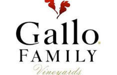 gallo_family