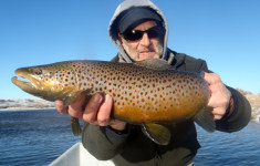 trophy_trout