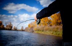 wade_fishing_1