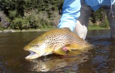 wade_fishing_2