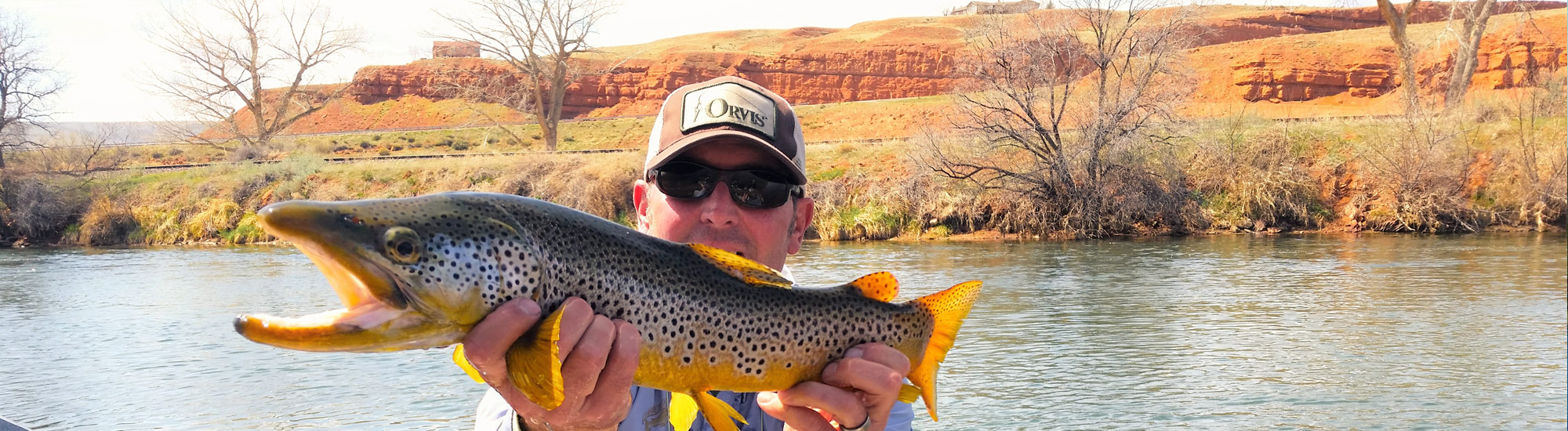 Bighorn river fishing report four seasons anglers for Bighorn river fishing report