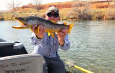 bighorn_river_2